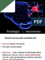 Fiziologia        neuronului