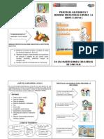 Diptico Influenza 31-07-13
