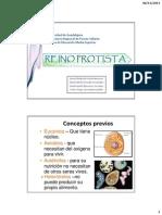 reinoprotista-110523194308-phpapp01