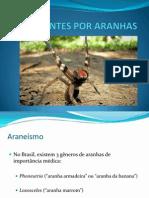 Apresentação1 aranhas