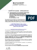 FondoPaez_Mayacert09