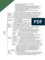 mapa 2° certamen  Casación Forma y Fondo (1)