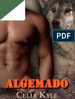 Algemado-ck 004 - Algemado Port
