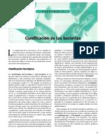 Clasificacion de Las Bacterias