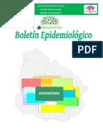 Boletin__Araneismo