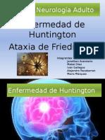 Presentación Neuro HD