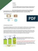 MECANISMOS DE PRODUCCIÓN NATURAL e INDUCIDO