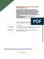 Degradacin de Plastico Con Hongos- Russell Et Al, 2011