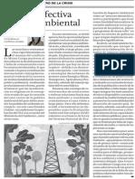 Por una efectiva política ambiental - Irma Montes Patiño