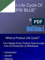 A Marketing Research Project on Pepsi: Market Segmentation