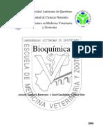 Texto de Bioquímica 2008 para PDF