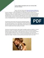 Service D'Urgence Veterinaire Geneve 2