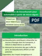 Production de biocarburant à partir des micro-algues