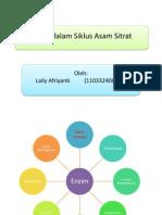 Enzim Dalam Siklus Asam Sitrat (Lely)