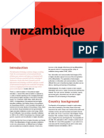 ICT HE Mozambique (1)