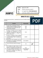 MINUTA-AMIPCI.20ago09