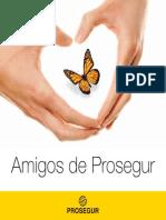 Catalogo Amigos 2013