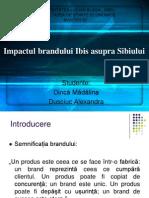 Impactul Brandului Ibis Asupra Sibiului - Dinca Madalina, Dusciuc Alexandra