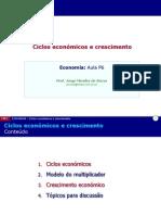 P06 Ciclos Economicos e Crescimento