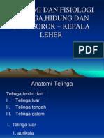 Anatomi Dan Fisiologi Tht-kl