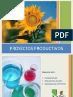 Proyectos Productivos Clases