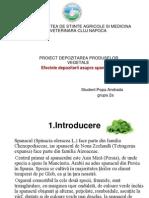 Proiect Depozitare Pp