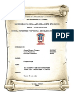 Diagnostico de Enfermedades Virales y Viroides..Opcion IV Final