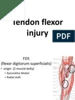 Tendon Flexor Injury ZED