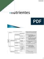 Clase 2 Nutricion