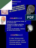 1. III Unidad. Semiologia Craneo y Maxilares