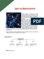 Psicología-La Neurociencia