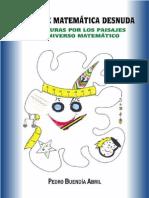 Diario de Matemática Desnuda ( o aventuras por los paisajes del universo matemático)