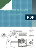 Ppt Mekanisme Filariasis