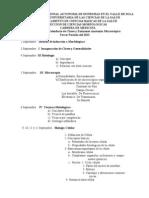 Programa de Clases III 20131