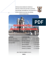 Refinacion de Gas (Grupo 2)