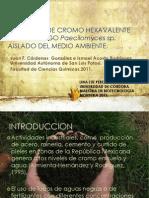 REMOCIÓN DE CROMO HEXAVALENTE POR EL HONGO Paecilomyces