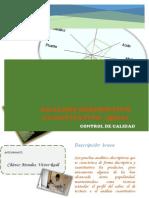 Informe Final (Qda)