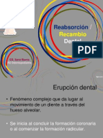 Rizolisis Dental 2