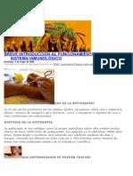 Apiterapia Coyoacan