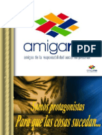 Curriculum AMIGARSE 2009 Agosto