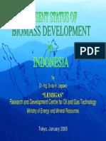 EvitaLegowo Biomass Indonesia