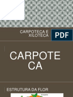 Carpoteca e Xiloteca