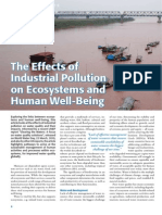 The Effects of Industrial Pollution on Ecosystems and Human Well-Being
