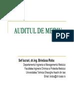 Auditul de Mediu
