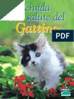 Guida Gattino