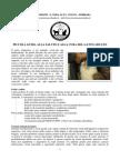Guida Alla Salute e Cura Del Gatto Adulto