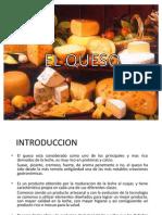 56106964 El Queso Diapositivas