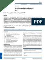 Potential Fuel From Algae