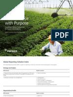 Pepsico 2008 Sustainability Report