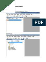 Tutorial SQL Server 2008 (Ingles) - Braulio Palma
